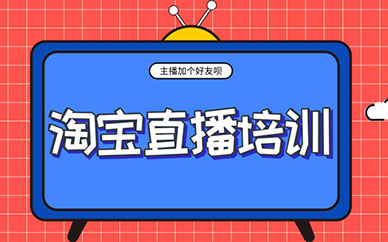 广州淘宝直播培训