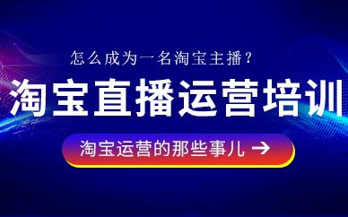 东莞淘宝电商直播运营培训班