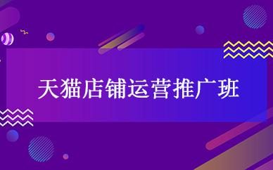 广州天猫店铺运营推广培训班