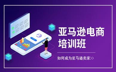 深圳亚马逊跨境电商店铺运营培训班