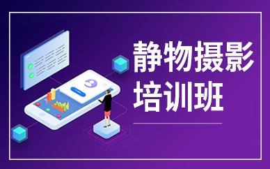 深圳淘宝产品商业摄影学习培训班