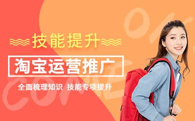 广州淘宝店铺运营推广课程学习培训班