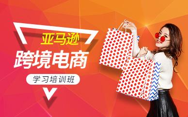 深圳亚马逊跨境电商店铺运营推广培训班