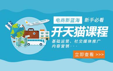 广州天猫开店培训课程