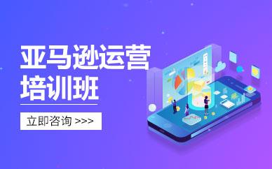 广州亚马逊电商运营培训班