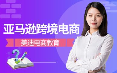 广州白云区亚马逊跨境电商培训班